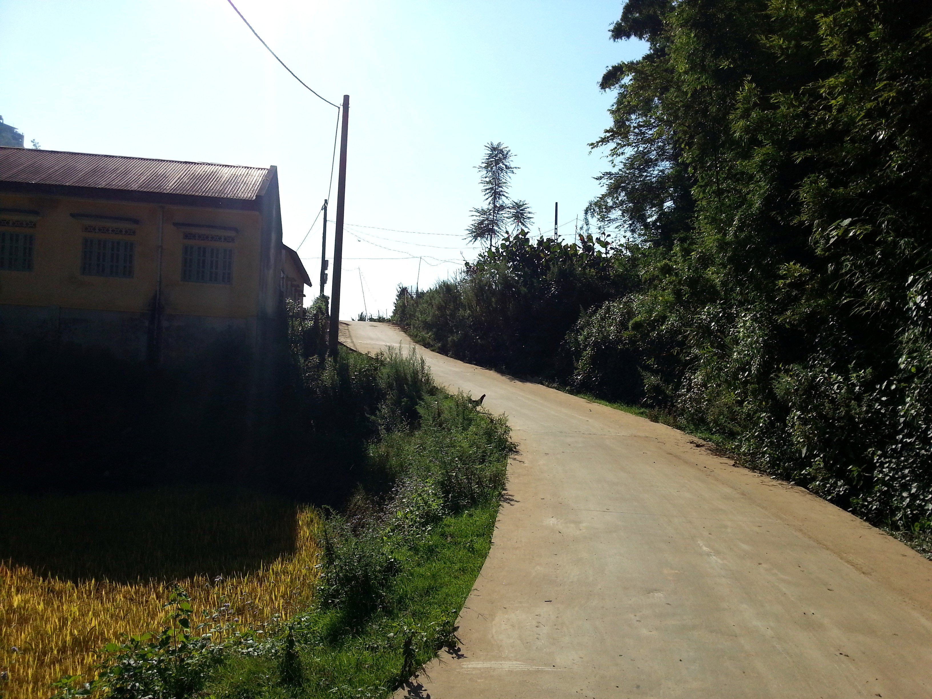 The first part of the walk to Cat Cat Village is on a Concrete Road